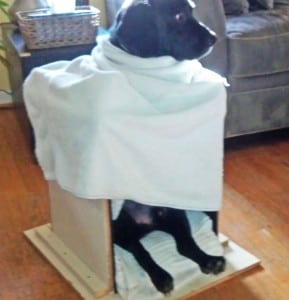 Benny-chair