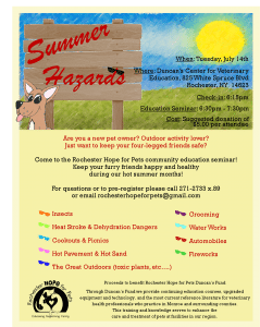 Summer Hazards Flyer 2015