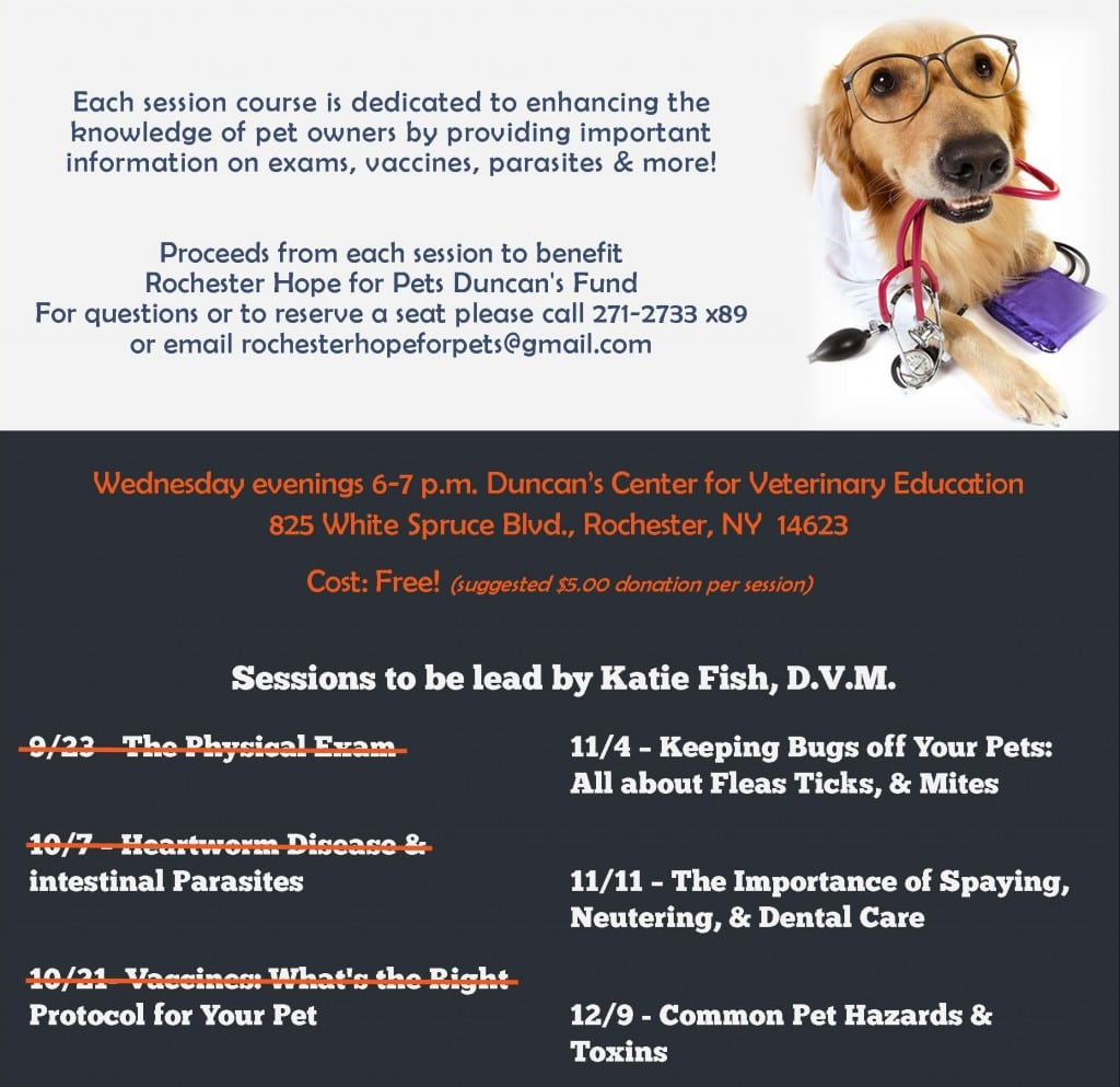 Mini Vet School 2015- UPDATED